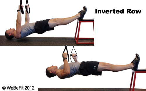 Cross-Training for Yogis  Cultivating Functional Balance in the Upper    Inverted Row Muscles